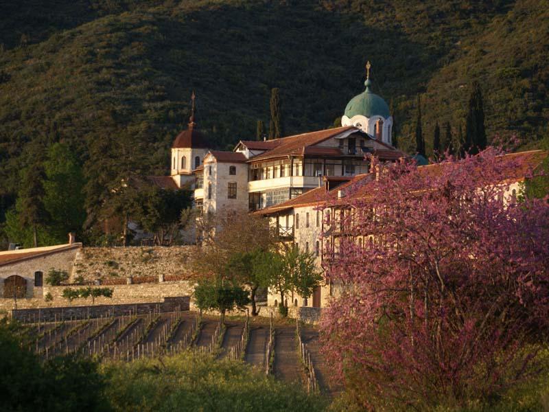 Τσάνταλη (Μετόχι Χρωμίτσας Αγίου Όρους) - Wines of Greece